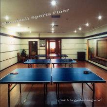 Plancher de tennis de table intérieur professionnel