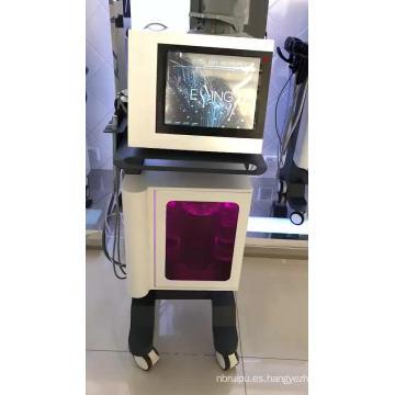 Bestseller 2020 L-18 ESSING Máquina multifunción para limpieza y lifting facial