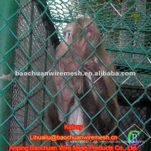 PVC cubrió la cerca animal del acoplamiento de la cadena de 50 * 50m m