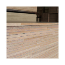 Factory Price Melamine Chipboard Particle Board for Furniture Usage