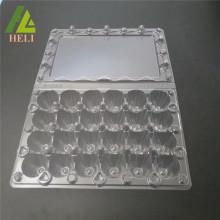 Conteneur de 24 oeufs en plastique de Coturnix d'oeufs de cellules