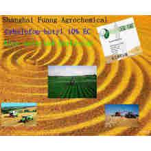 Nouveaux herbicides pour le cyhalofop-butyle efficace pour le riz