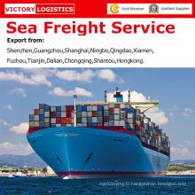 Service professionnel de fret maritime / service d'expédition de fret maritime de la Chine à dans le monde entier (service de fret maritime)