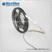 3014 Cct Variant et Dimmable LED Strip Lighting