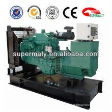 generator 1 mw