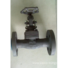Forged steel gate valve 3/4 Inch