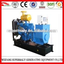 Générateur Weifang Ricardo diesel 8-200kw avec CE