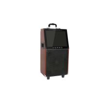 Aktiver hölzerner Trolley-Party-tragbarer Bluetooth-Lautsprecher