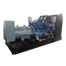800kVA bis 3000kVA Diesel Stromerzeugung mit Mtu Motor
