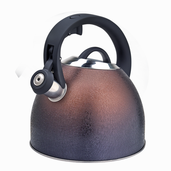 Stainless Steel Whistling Tea Kettle Fh 470