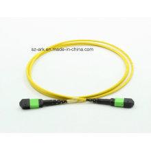 MPO / APC (macho) -MPO / APC (hembra) OS2 Fibra Óptica