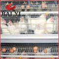 Équipement de ferme de volaille de poulet pour le poulet de couche d'éleveur de couche