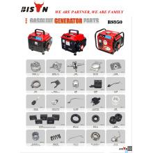 BISON (CHINA) Alle Arten von Benzin-Generator Ersatzteile, Benzin-Generator AVR