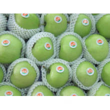 Top Quality Fresh Green Gala Apple