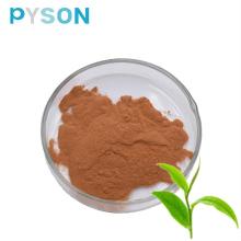 Polifenoles del té del 98% del polvo del extracto del té verde