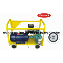 Zcheng bomba de transferencia eléctrica ex-prueba Zcmtp-250