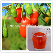 china red goji beeren 250/280/350/380/500/750, wolfberry samen