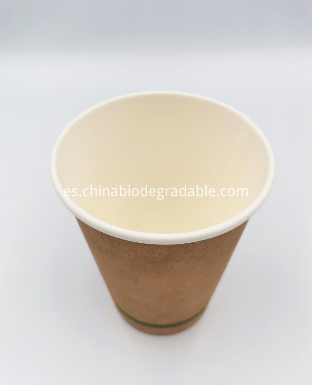 PLA Disposable Coffee Paper Cup 16oz