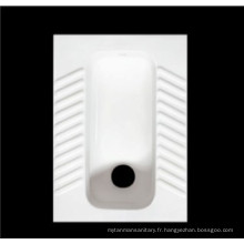 Squat WC pour le marché de l'Afrique (DB3010)