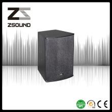 Zsound U10 10 Inch Night Club Full Way Passive PRO Audio Speaker