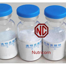 Sodium Hyaluronate/Hyaluronic Acid (Cosmetic Grade)
