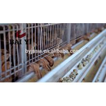 Cage de caille de volaille en métal de haute qualité à vendre