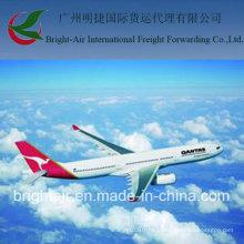 Международная доставка Грузовое судно грузовые перевозки из Китая в мире