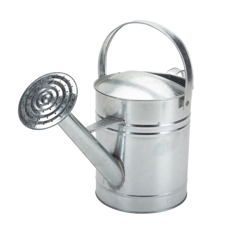 Galvanized Watering Can Large