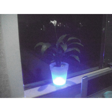 Garden Pot Solar Light