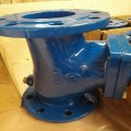 Double Flanged Ball Check Valve