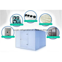 PU-Panel Fisch Kühlräume für Kühl- und Gefriergeräte Anwendungen