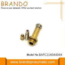 2/2 Way Brass Color Solenoid Stem Valve
