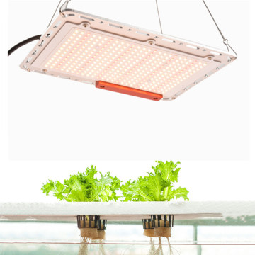 Venda quente da Amazon free-assemabled 120w grow light