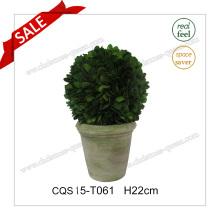 H22cm Arbre / Ball Plant Type et Feuilles Naturelles Artificial Plant