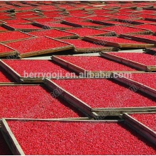 Baies de Goji Chinois / Lycium Berry / Sun Dried