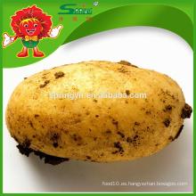 Precio al por mayor 2015 para la patata amarilla congelada grande