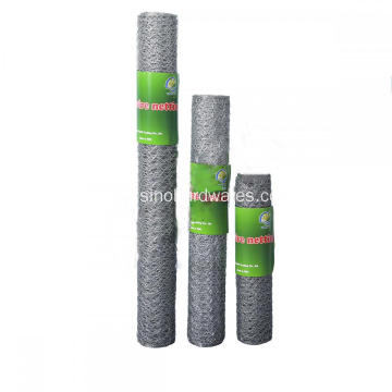 Hot Dipped Galvanized Poultry Netting