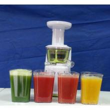2013 Slow juicer juicer best with DC motor 150W