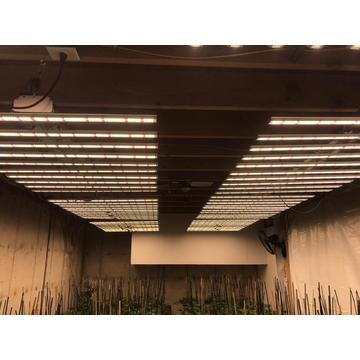 LED Grow Aluminio Fulence Bar 2020