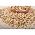 2017 New Crop Sarrasin Cerneaux / Grains, Fabricant