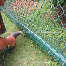 Plastic Coated Chain Link Zaun (konkurrenzfähiger Preis)