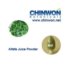 98% bem solúvel em água Alfafa suco em pó