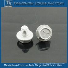 China Factory Produce SAE J429 Gr5 Flange Bolt