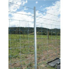 Fence/Garden Fence/Safety Panels with Post