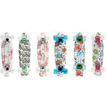 22 polegadas Penny Skateboard com boa venda (YVP-2206-5)