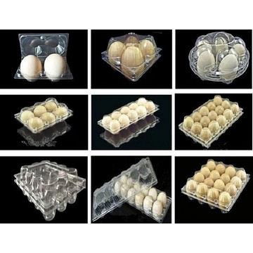 Plastic CakeTray Vacuum Forming Making Machine