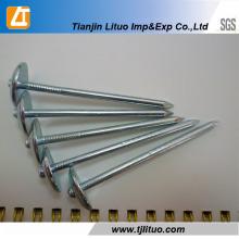 Professioal Manufacturer Spiral Shank Roofing Nails