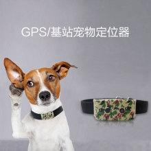 SIM GPS Cat Dog Dog Tracker