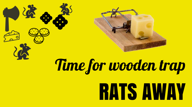 Wooden Rat Trap Time