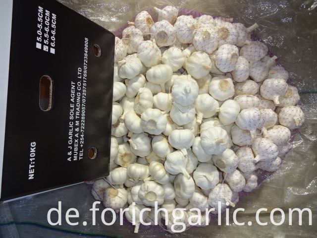 Fresh Pure White Garlic 2019